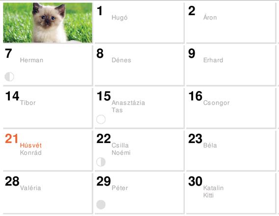fogyó naptár nyomtatható