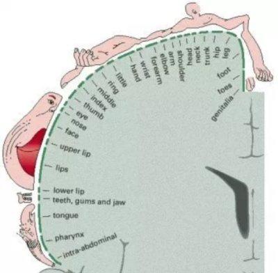szoptatás és fogyás meddig kell fogyni szoptatáskor