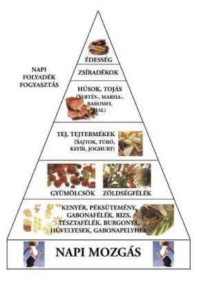 Hogyan válassz fogyókúrát?
