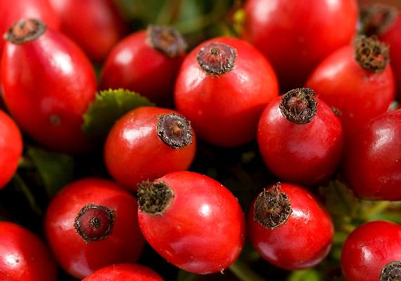 5 legjobb zsírégető gyógynövény koktélozáshoz