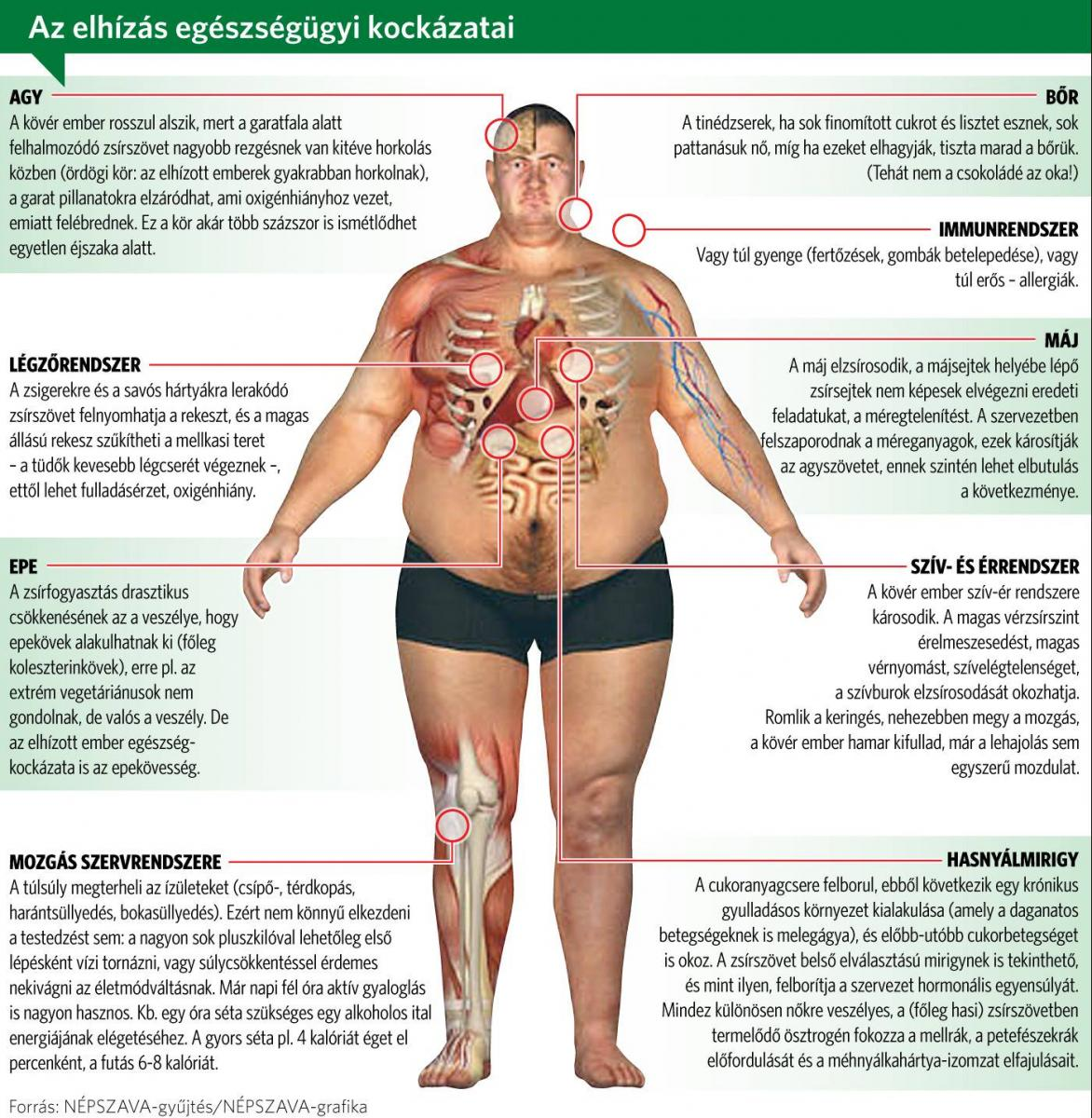 fogyhat-e egy kövér ember kilenc hír fogyás