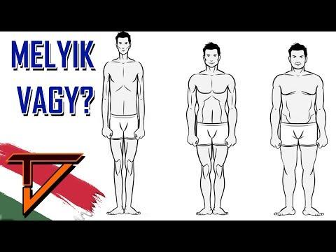 különböző testtípusok a fogyáshoz