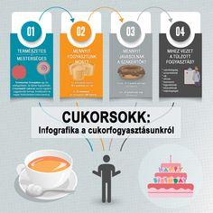 21. századi gyógynövényes fogyókúrás teák vélemények