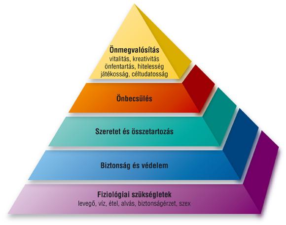 zsírvesztés piramis