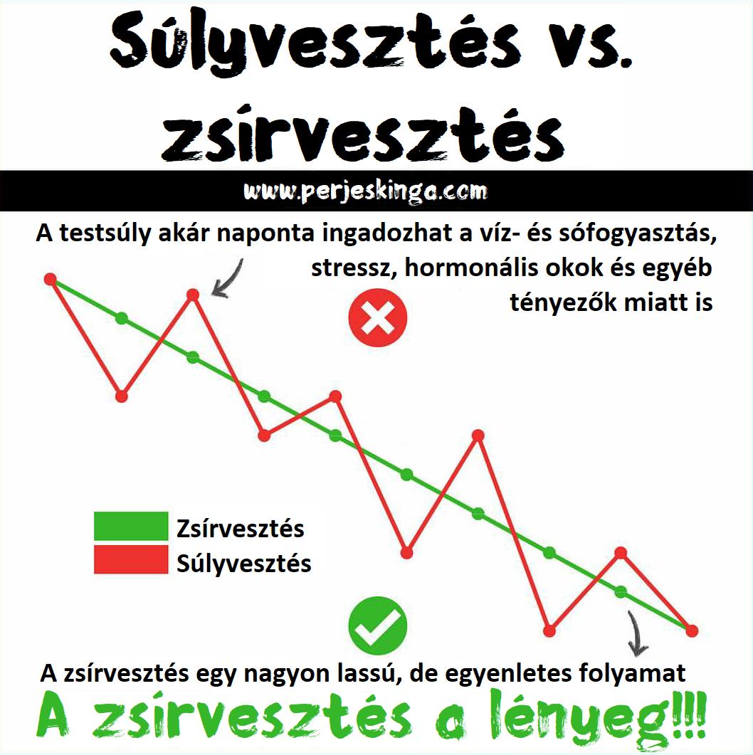 A logalyzer fogyás csökkentés - Vegetáriánus étrend 10 kiló súlycsökkentés céljából