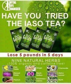 Hogyan lehet lefogyni az iaso teával status. Hogyan készítik el a quinoa a fogyást status
